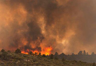 Kejadian kebakaran di Arizona dengan api yang semakin marak berikutan suhu tinggi dan keadaan yang berangin. Foto AP